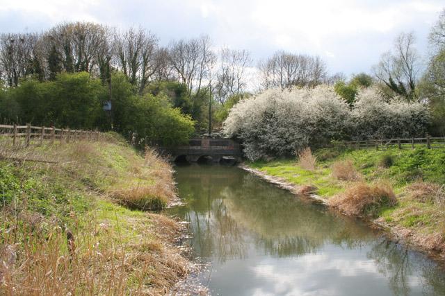 The River Gwash, near Manton, Rutland