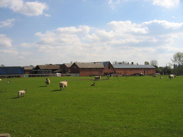 Castle Farm, Studley