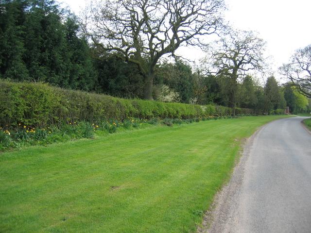 Lane to Morton Bagot, Spernal