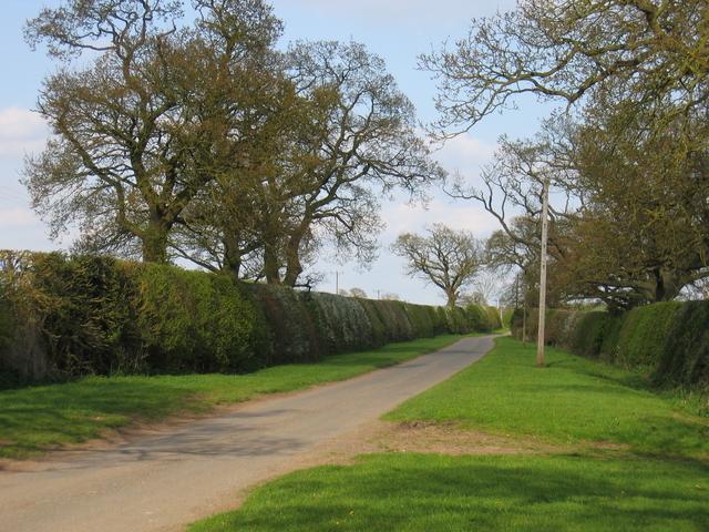 Lane to Upper Spernall Farm