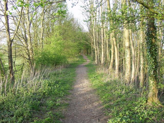 Footpath through Railway Wood