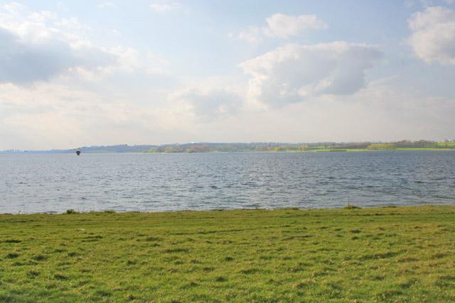 Rutland Water from Mowmires Reach