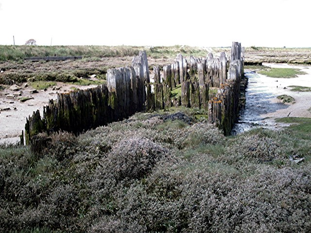 Old groyne west of South Fambridge