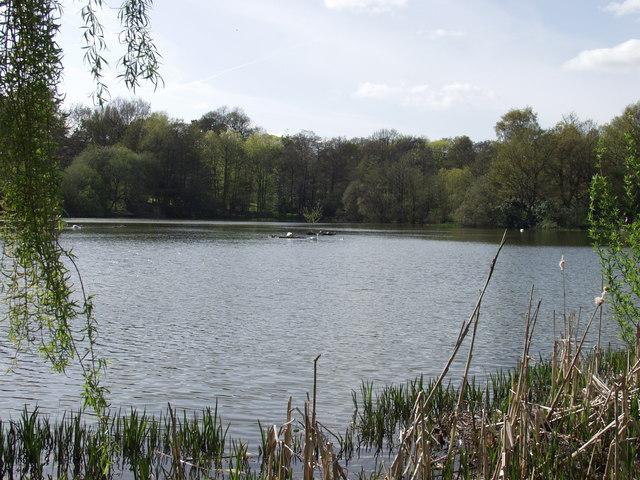 The Lake, Acton Park, Wrecsam