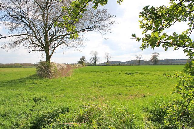 Farmland near Egleton, Rutland