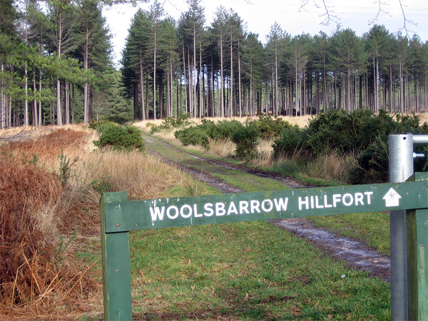 Path to Woolsbarrow Hill Fort, Wareham Forest