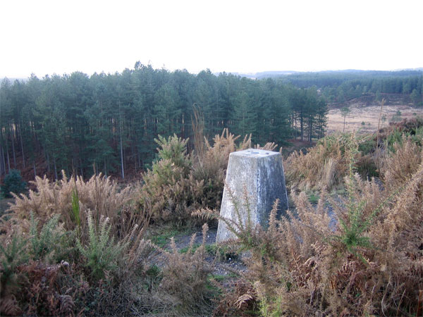 Trig Point on Woolsbarrow Hill Fort