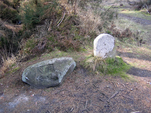 Memorial Stones, Wareham Forest