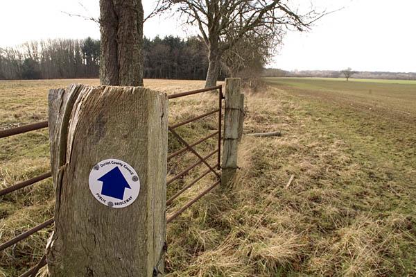 Bridleway near Organford