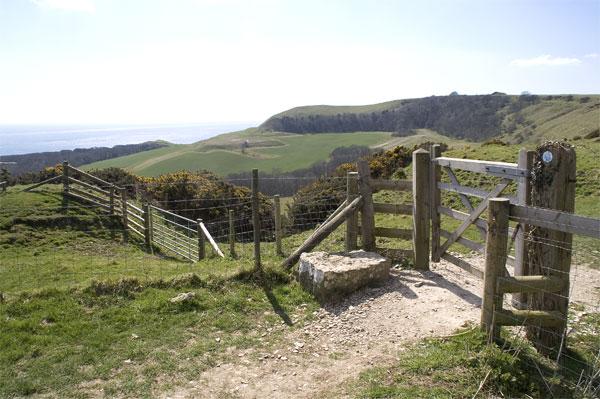 Bridleway to Swyre Head