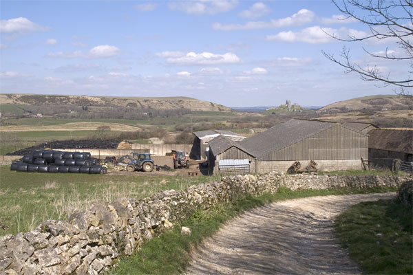 Blashenwell Farm, Kingston