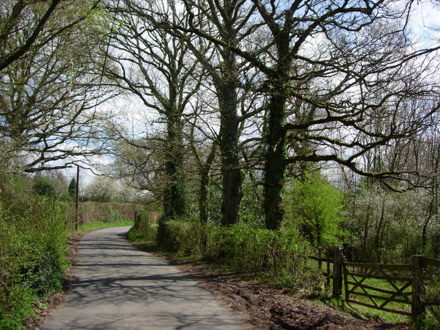 Parrock Lane near Upper Hartdield