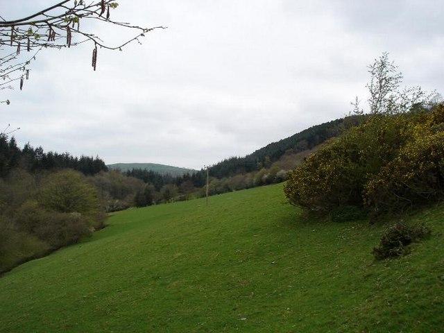 Fields near Allt Ddu