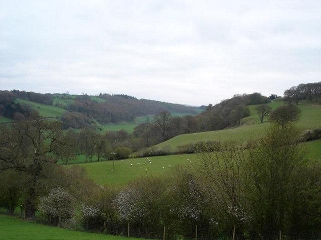 Mostyn fields
