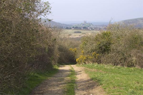 Purbeck Way near Kingston