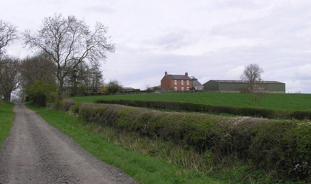 Fir Tree Farm : Salters Lane.