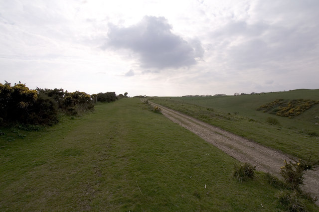 Track to Ridgeway Hill, near Church Knowle