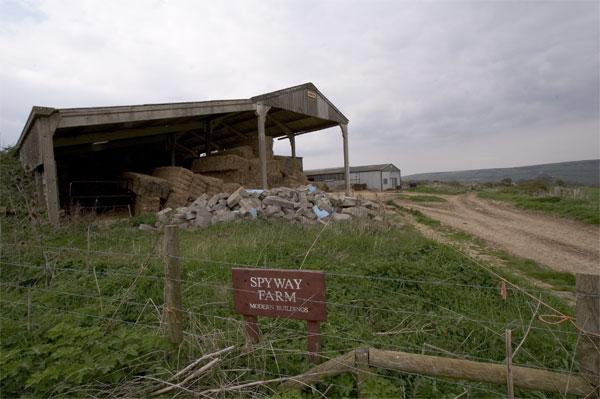 Barns at Langton Matravers
