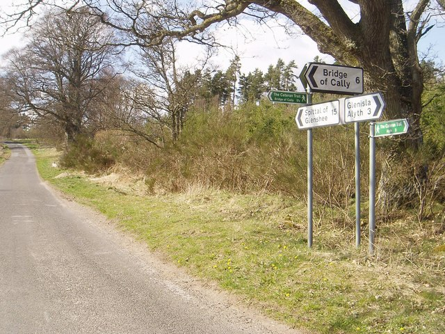 The junction at Gauldswell Wood