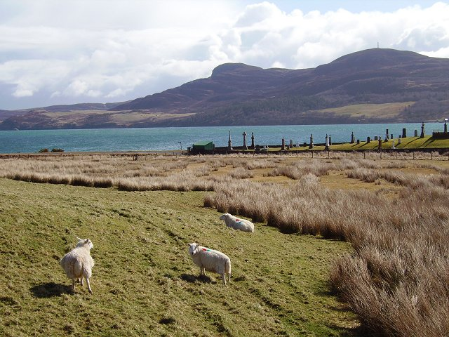 Cemetery, Kyle of Tongue