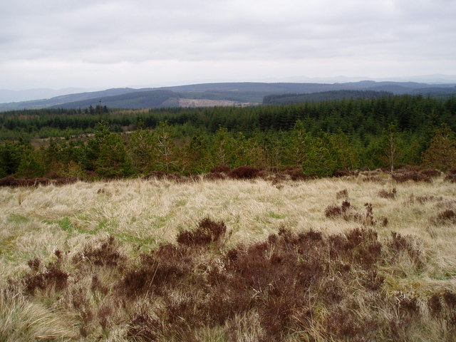 Moorland in the Clocaenog Forest.