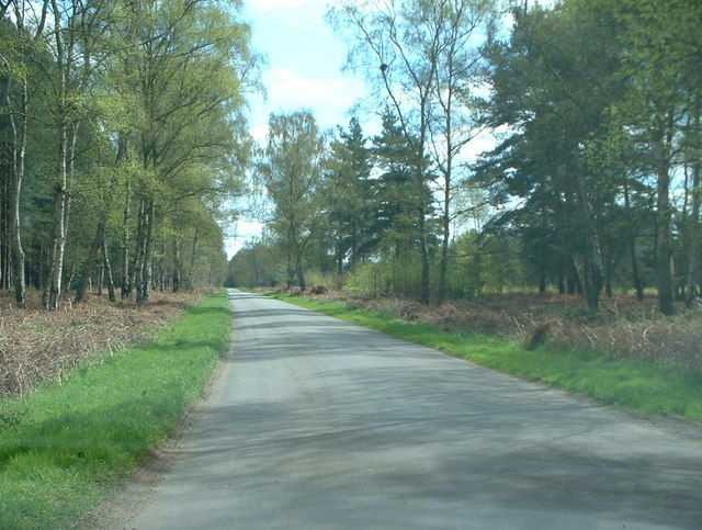 Road on Sandringham estate.
