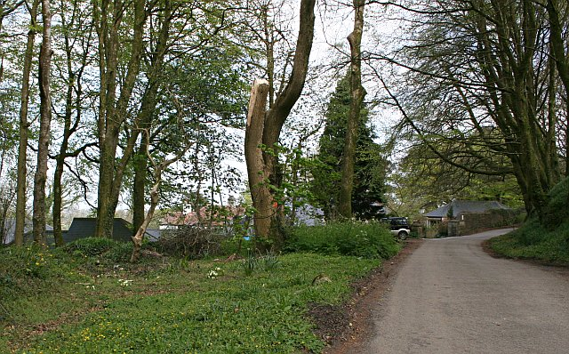 Woodland and Houses at Roskrow Farm