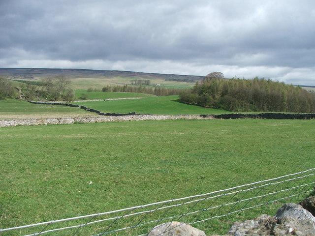 West Bolton Plantation.