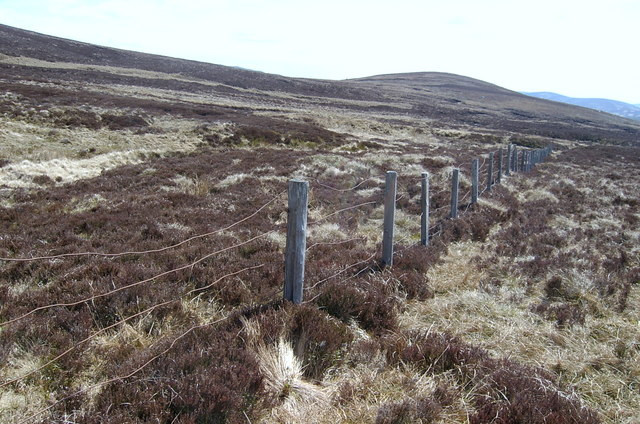 Fence running through Corrie of Inchdowrie.
