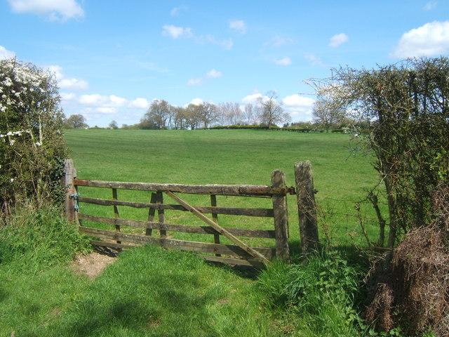 Field near Aylswade Farm, near Frittenden