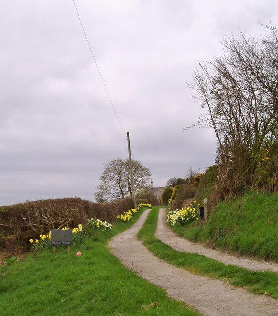 Road to Pen-y-Ffrith