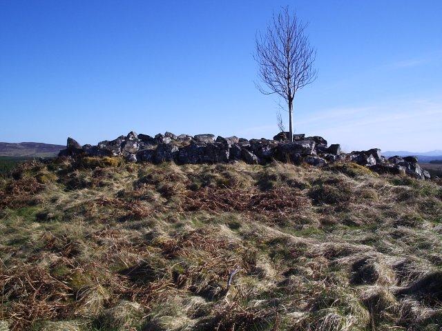 A Broch in Dalchork Wood
