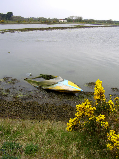 Submerged speedboat in Four Acre Pond, Normandy