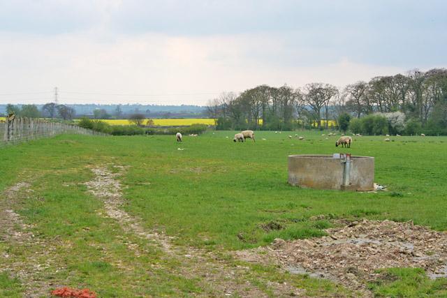 Farmland near Colston Bassett, Nottinghamshire