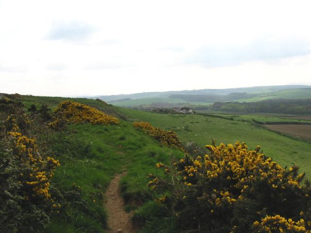 Linton Hill and Clayhanger Farm, near Abbotsbury