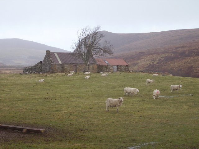 Abandoned house, Strath Melness