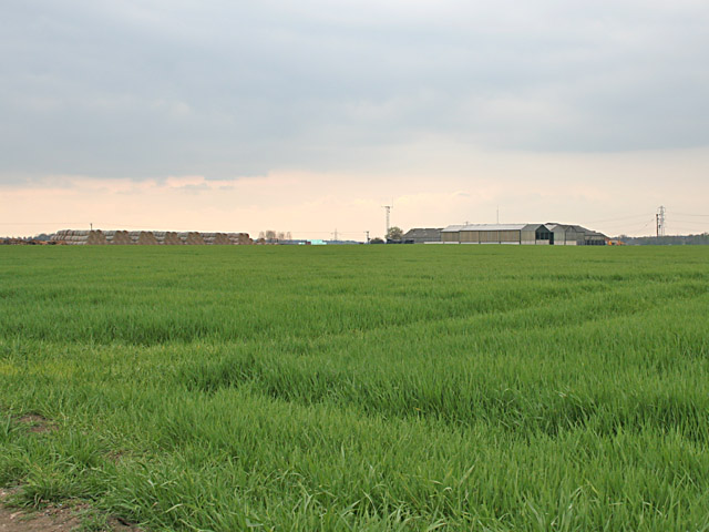 Farmland near Cropwell Bishop