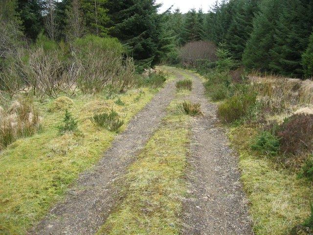 Waternish Forest Track