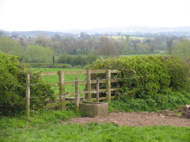 Double trough and fields