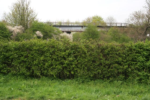 Railway Bridge near Stragglethorpe