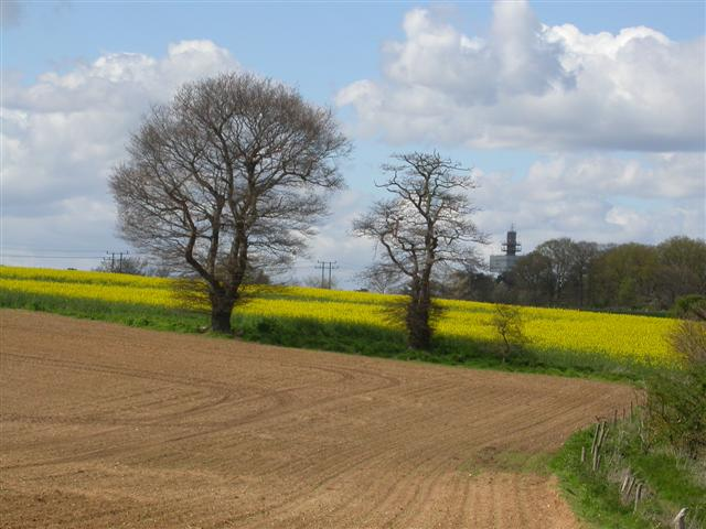 near Newbourne