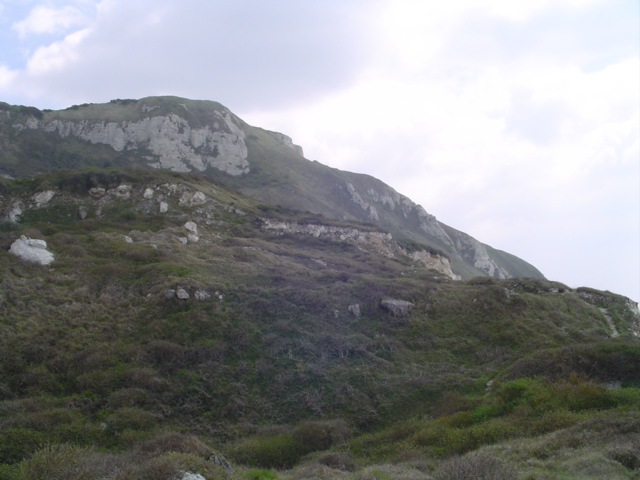 Coastal Slope between Ringstead and White Nothe.