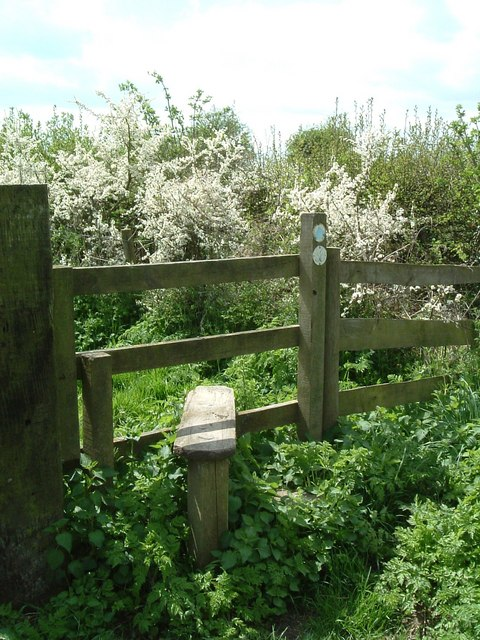Stile & Blackthorn