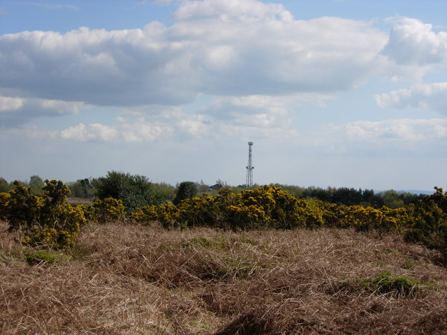 View from Pylons Car Park - Ashdown Forest