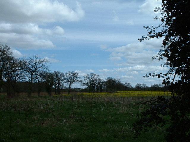 Farmland just outside West Newton.