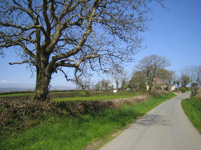 Lane by Potterslade