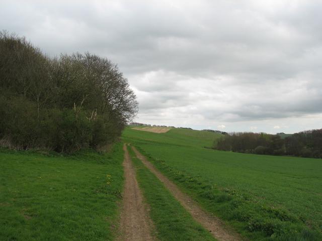 Bridleway Towards Ruckland