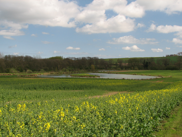 Lincolnshire Wolds Ponds.