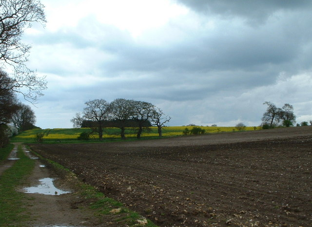 Farmland view.