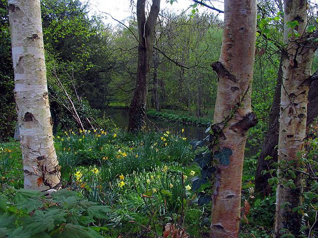Garden in Bibury